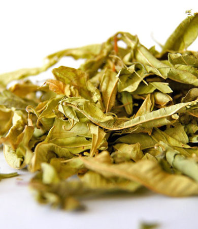 Balsam of Tolu